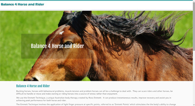 Balance 4 Horse and Rider web site designed by QD Design